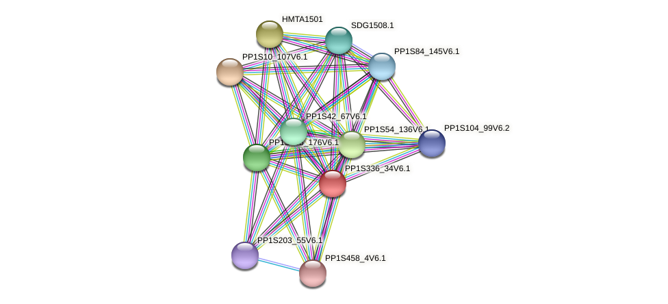 PP1S336_34V6.1 protein (Physcomitrella patens) - STRING interaction network