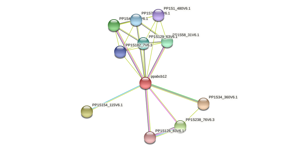 ppabcb12 protein (Physcomitrella patens) - STRING interaction network