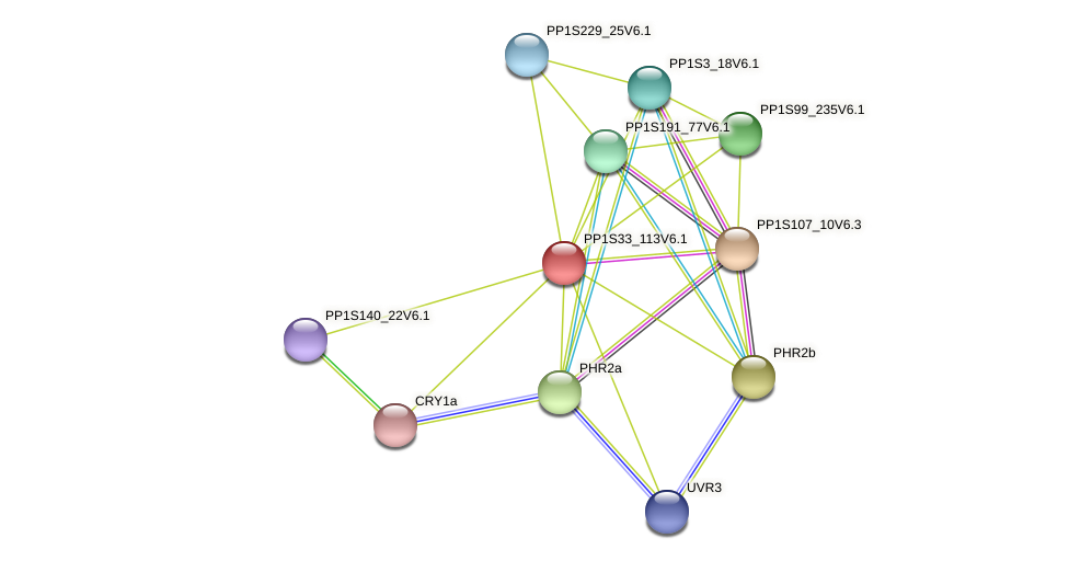 PP1S33_113V6.1 protein (Physcomitrella patens) - STRING interaction network