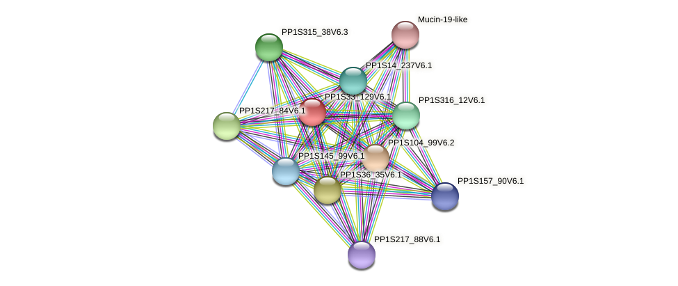 PP1S33_129V6.1 protein (Physcomitrella patens) - STRING interaction network