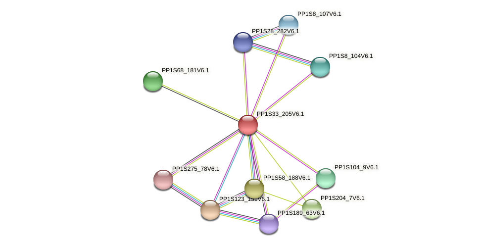 PP1S33_205V6.1 protein (Physcomitrella patens) - STRING interaction network