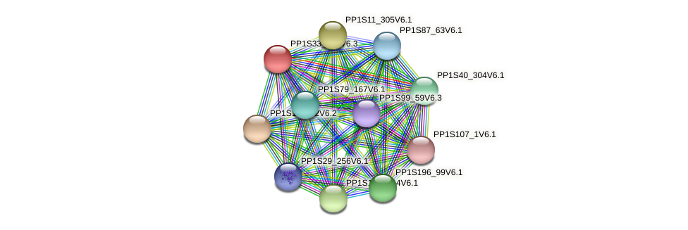 PP1S33_206V6.1 protein (Physcomitrella patens) - STRING interaction network