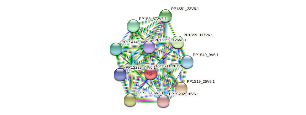 PP1S33_207V6.1 protein (Physcomitrella patens) - STRING interaction network