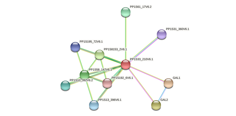 PP1S33_210V6.1 protein (Physcomitrella patens) - STRING interaction network
