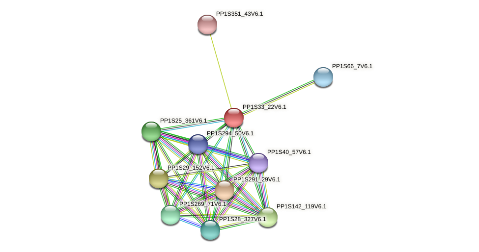 PP1S33_22V6.1 protein (Physcomitrella patens) - STRING interaction network