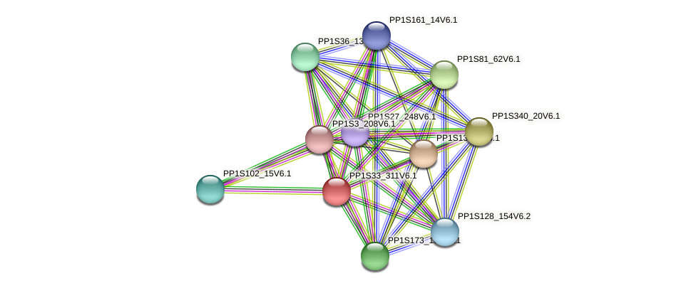 PP1S33_311V6.1 protein (Physcomitrella patens) - STRING interaction network