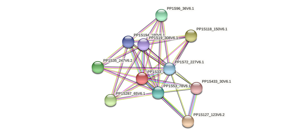 PP1S33_371V6.1 protein (Physcomitrella patens) - STRING interaction network