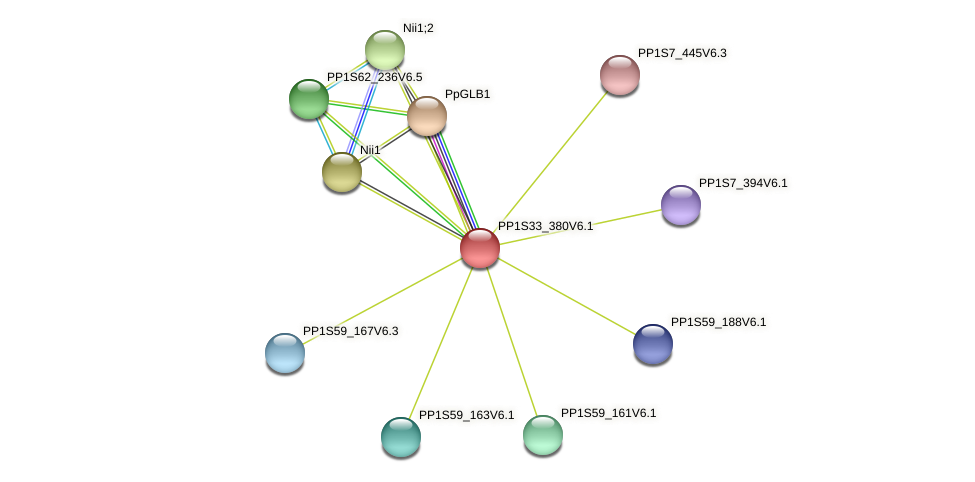 PP1S33_380V6.1 protein (Physcomitrella patens) - STRING interaction network