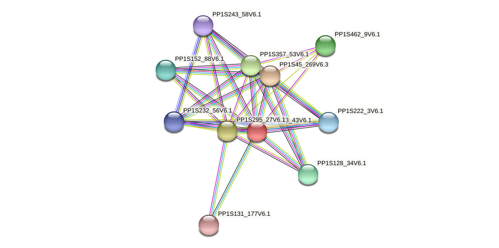 PP1S33_43V6.1 protein (Physcomitrella patens) - STRING interaction network