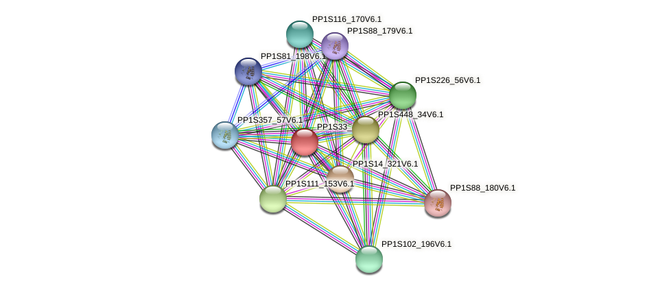 PP1S33_45V6.1 protein (Physcomitrella patens) - STRING interaction network