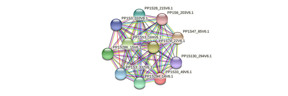 PP1S33_49V6.1 protein (Physcomitrella patens) - STRING interaction network