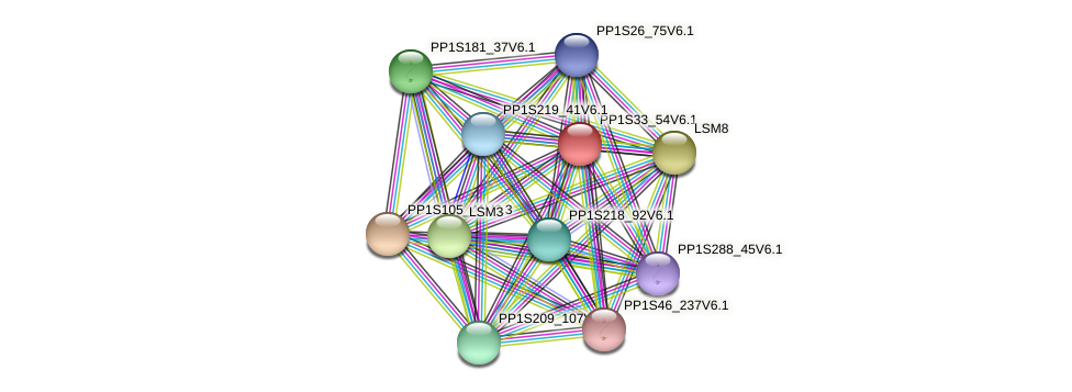 PP1S33_54V6.1 protein (Physcomitrella patens) - STRING interaction network