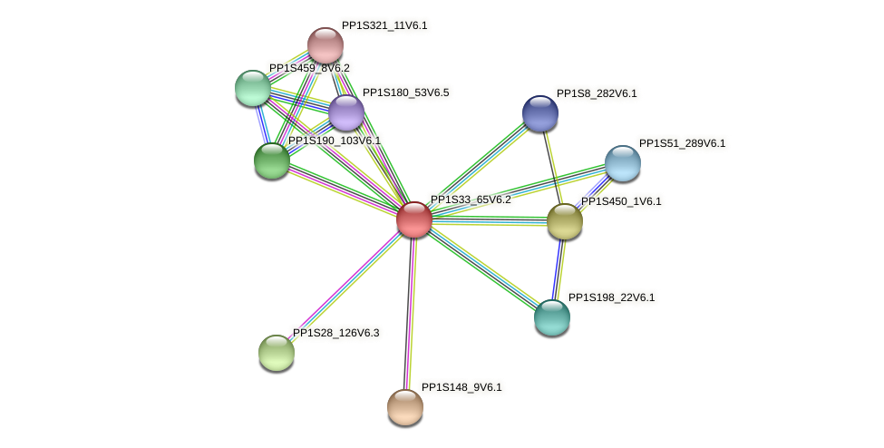 PP1S33_65V6.1 protein (Physcomitrella patens) - STRING interaction network