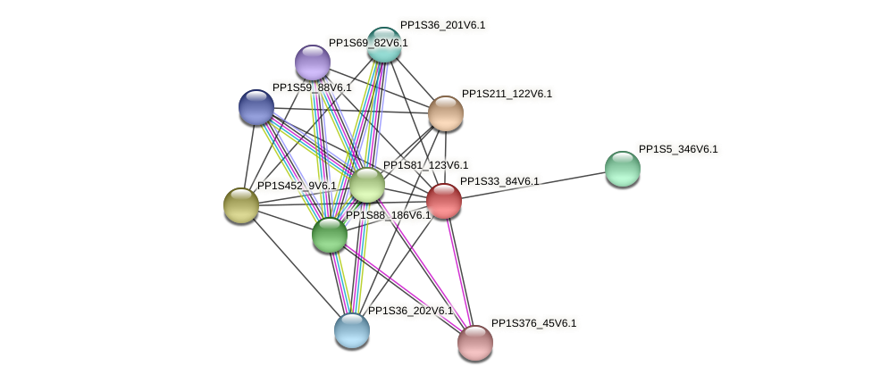 PP1S33_84V6.1 protein (Physcomitrella patens) - STRING interaction network