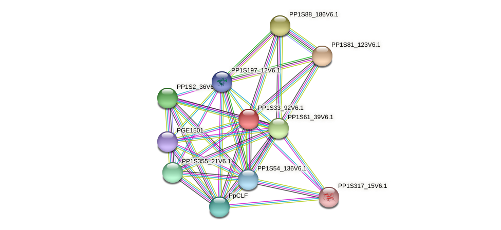 PP1S33_92V6.1 protein (Physcomitrella patens) - STRING interaction network
