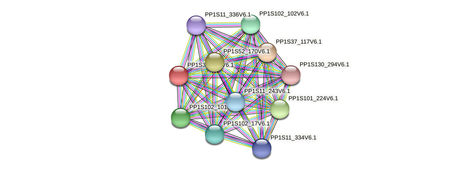 PP1S340_22V6.1 protein (Physcomitrella patens) - STRING interaction network