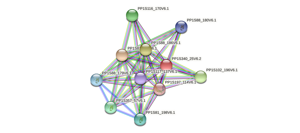 PP1S340_25V6.1 protein (Physcomitrella patens) - STRING interaction network