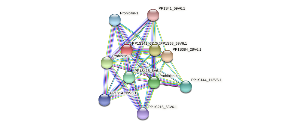 PP1S341_69V6.1 protein (Physcomitrella patens) - STRING interaction network