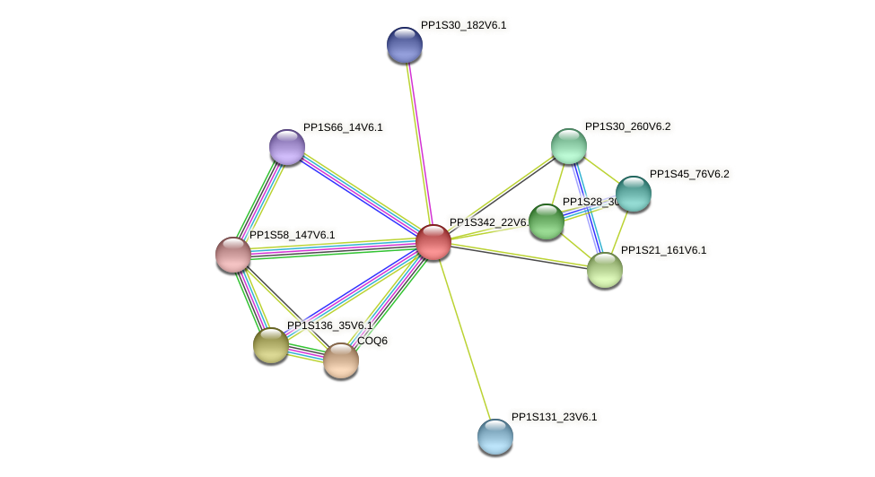 PP1S342_22V6.1 protein (Physcomitrella patens) - STRING interaction network
