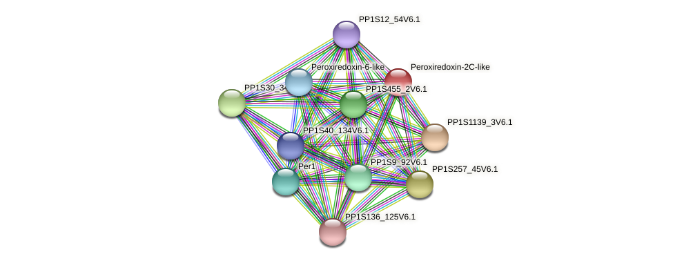 PP1S343_44V6.1 protein (Physcomitrella patens) - STRING interaction network