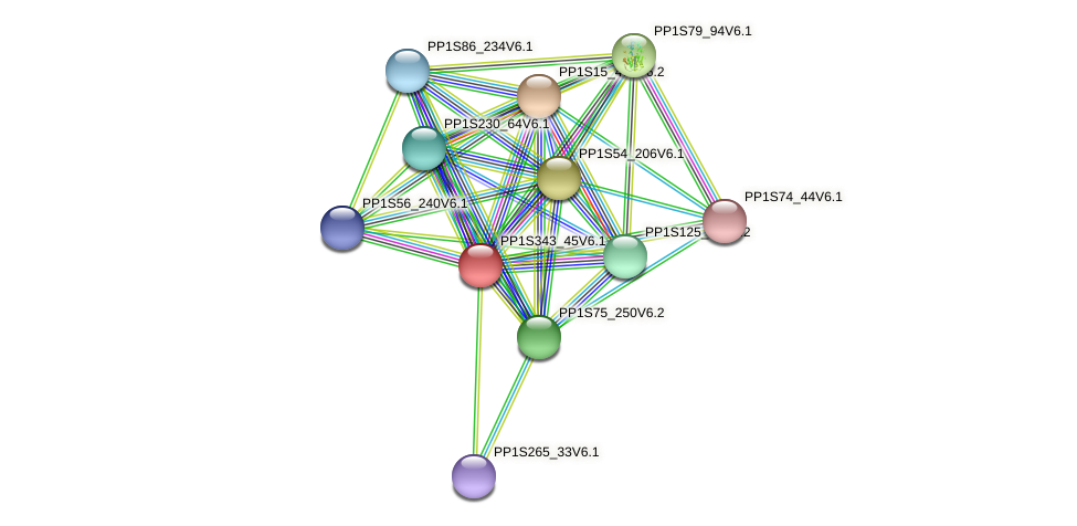 PP1S343_45V6.1 protein (Physcomitrella patens) - STRING interaction network