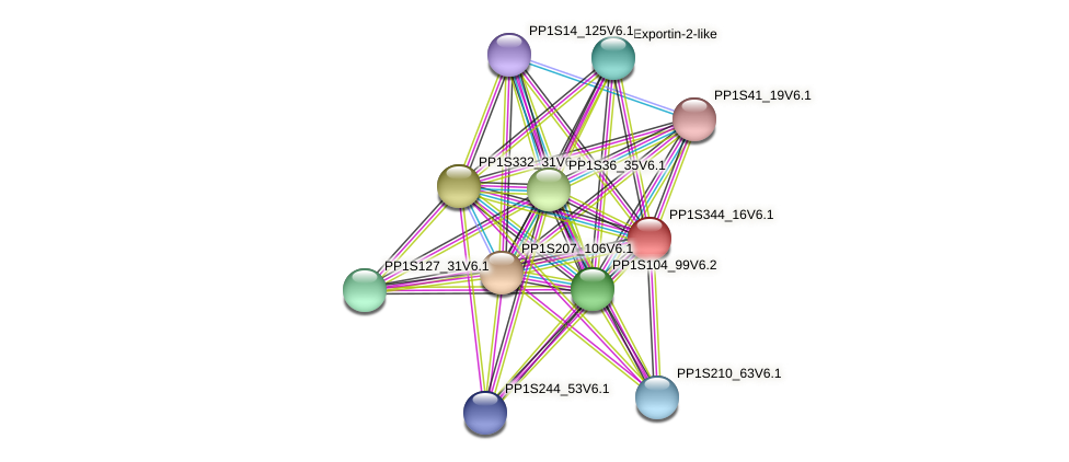 PP1S344_16V6.1 protein (Physcomitrella patens) - STRING interaction network