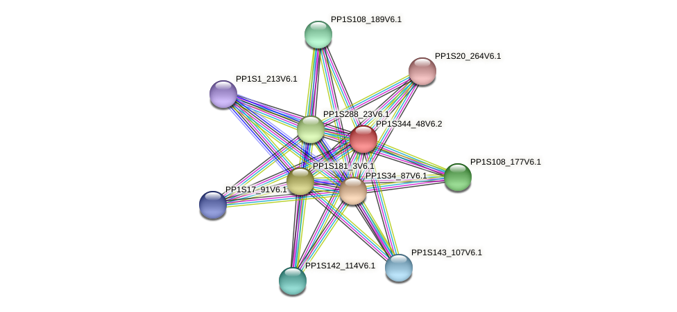 PP1S344_48V6.1 protein (Physcomitrella patens) - STRING interaction network