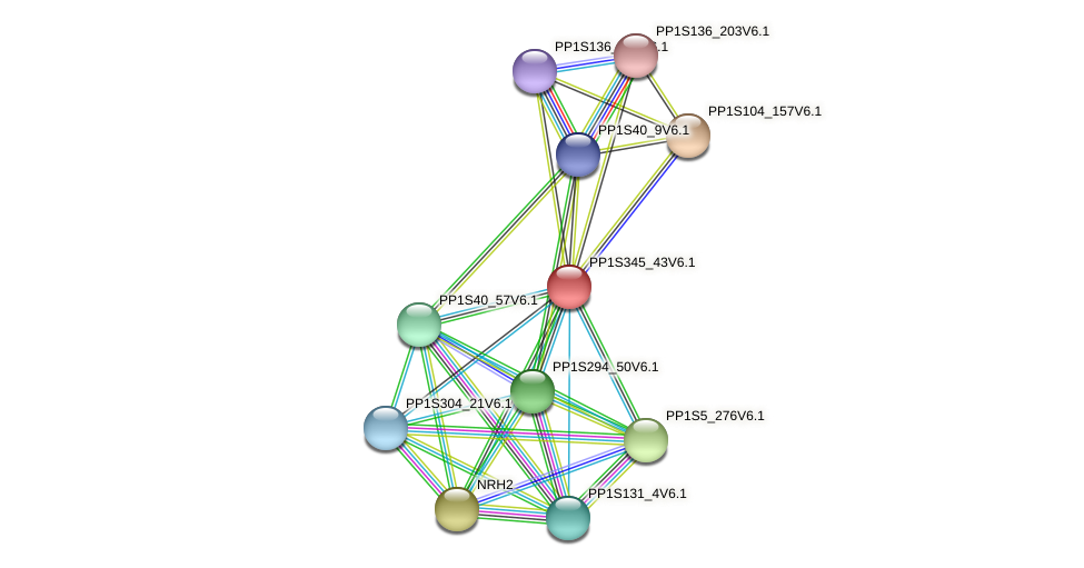 PP1S345_43V6.1 protein (Physcomitrella patens) - STRING interaction network