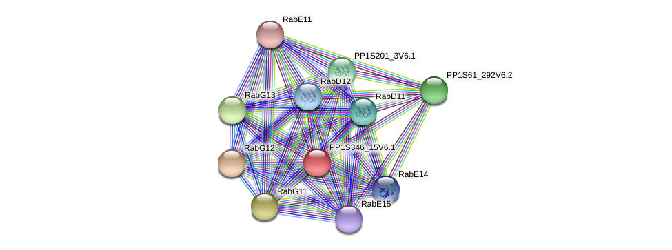 PP1S346_15V6.1 protein (Physcomitrella patens) - STRING interaction network