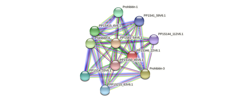 PP1S346_22V6.1 protein (Physcomitrella patens) - STRING interaction network
