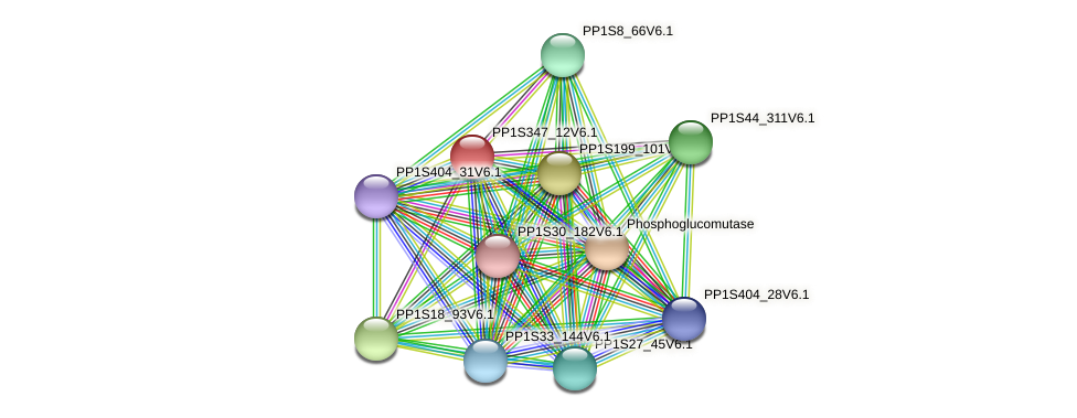 PP1S347_12V6.1 protein (Physcomitrella patens) - STRING interaction network