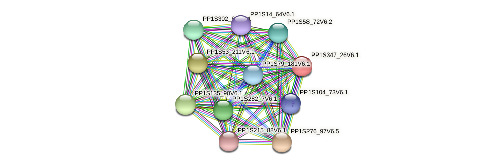 PP1S347_26V6.1 protein (Physcomitrella patens) - STRING interaction network