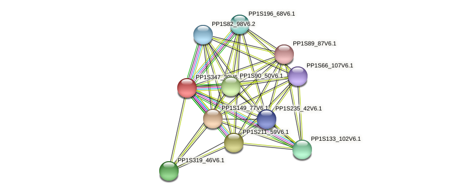 PP1S347_30V6.1 protein (Physcomitrella patens) - STRING interaction network