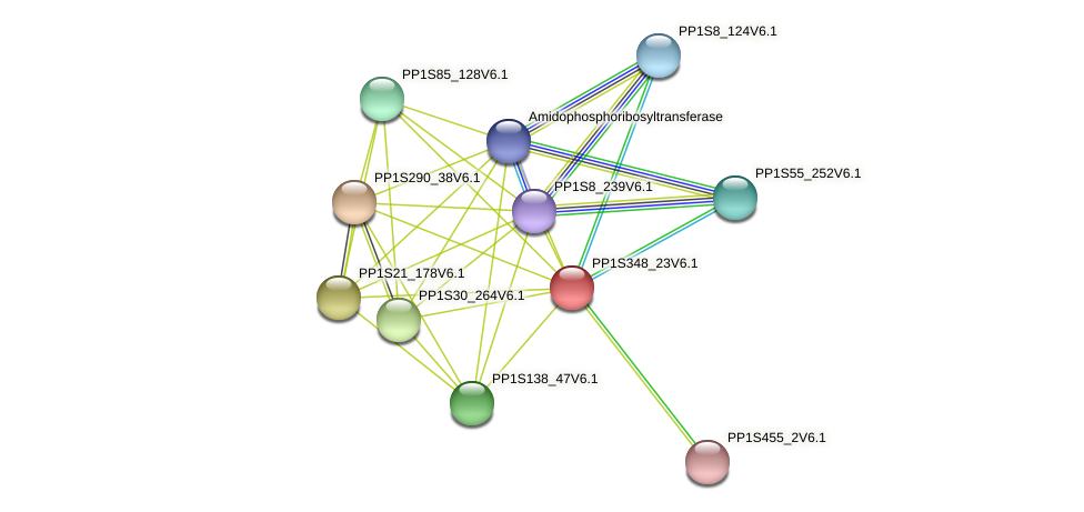 PP1S348_23V6.1 protein (Physcomitrella patens) - STRING interaction network