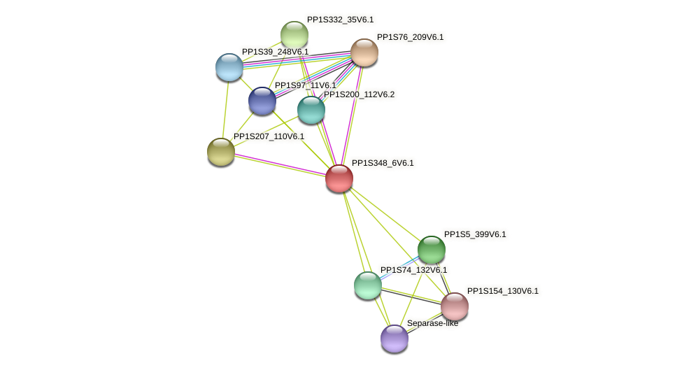 PP1S348_6V6.1 protein (Physcomitrella patens) - STRING interaction network