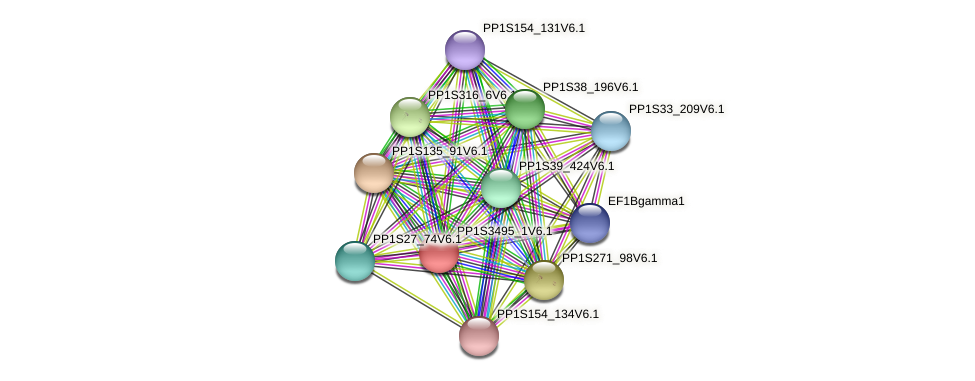 PP1S3495_1V6.1 protein (Physcomitrella patens) - STRING interaction network