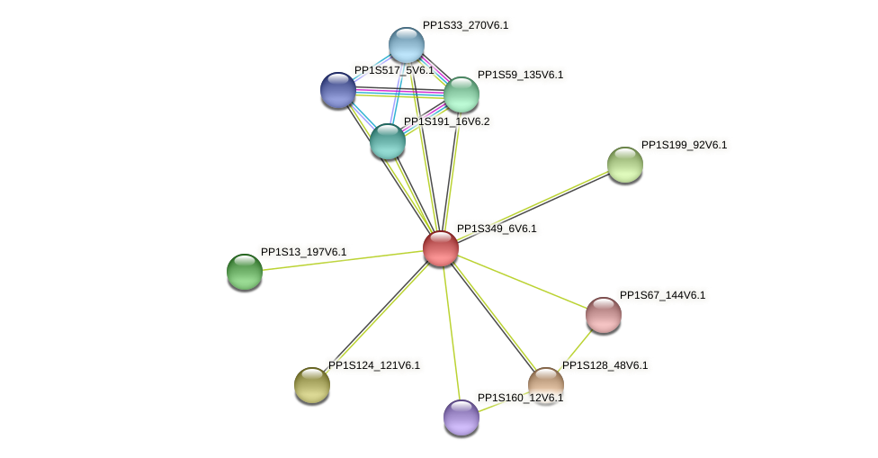 PP1S349_6V6.1 protein (Physcomitrella patens) - STRING interaction network