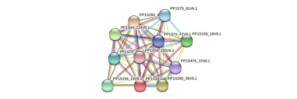 PP1S34_140V6.1 protein (Physcomitrella patens) - STRING interaction network