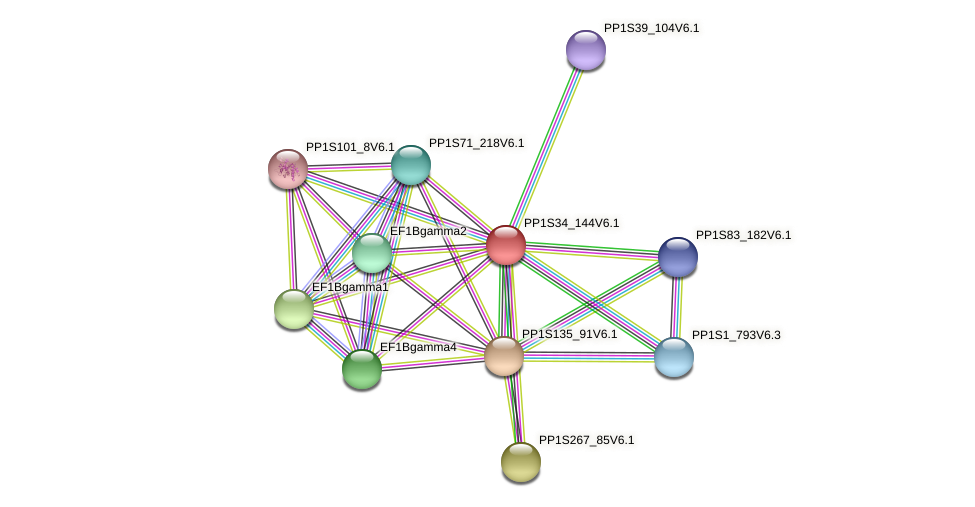 PP1S34_144V6.1 protein (Physcomitrella patens) - STRING interaction network