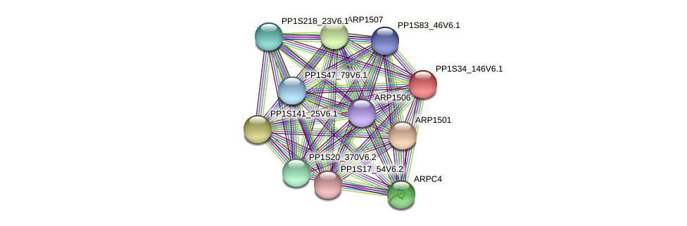 PP1S34_146V6.1 protein (Physcomitrella patens) - STRING interaction network