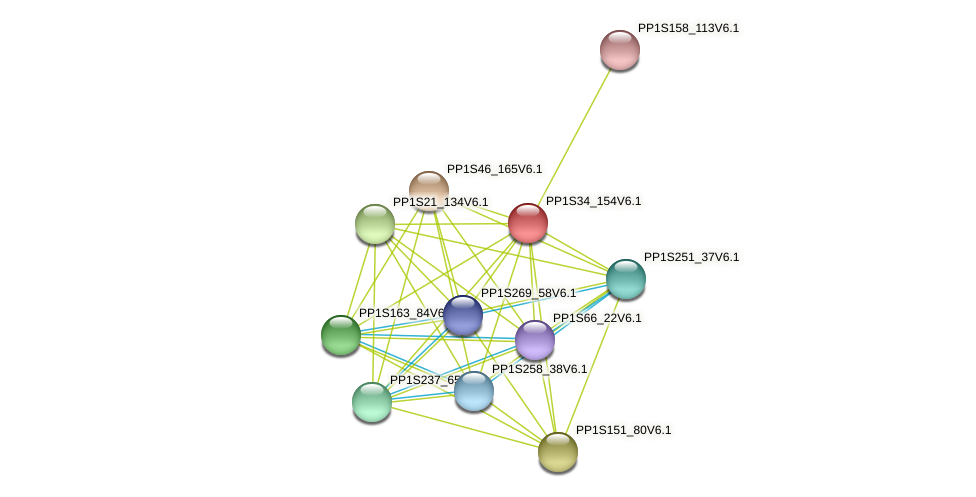 PP1S34_154V6.1 protein (Physcomitrella patens) - STRING interaction network