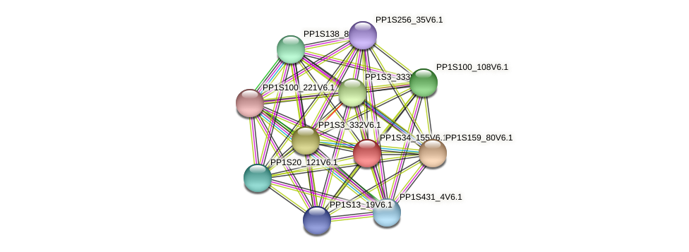 PP1S34_155V6.1 protein (Physcomitrella patens) - STRING interaction network