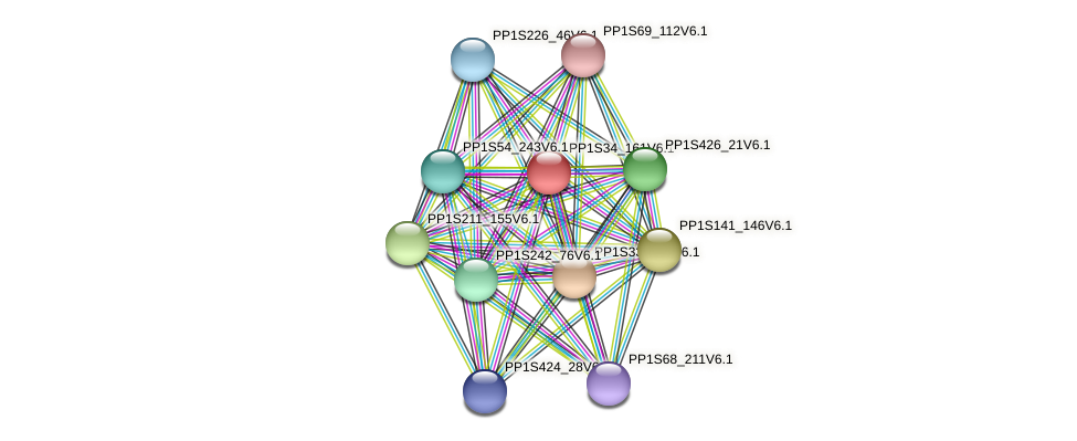 PP1S34_161V6.1 protein (Physcomitrella patens) - STRING interaction network