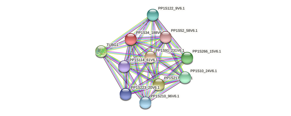 PP1S34_188V6.1 protein (Physcomitrella patens) - STRING interaction network