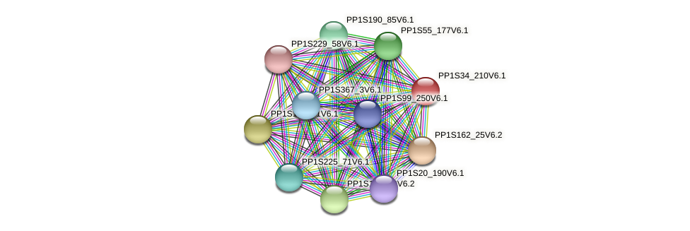 PP1S34_210V6.1 protein (Physcomitrella patens) - STRING interaction network