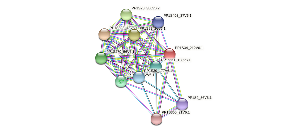 PP1S34_212V6.1 protein (Physcomitrella patens) - STRING interaction network