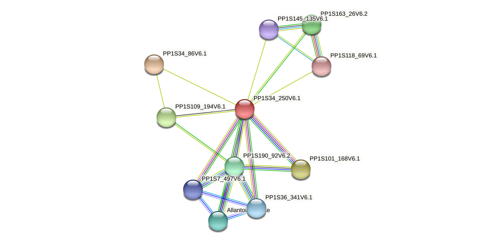 PP1S34_250V6.1 protein (Physcomitrella patens) - STRING interaction network