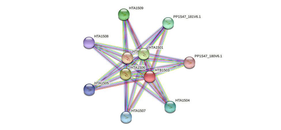 HTB1503 protein (Physcomitrella patens) - STRING interaction network