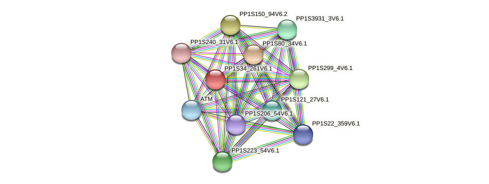 PP1S34_261V6.1 protein (Physcomitrella patens) - STRING interaction network