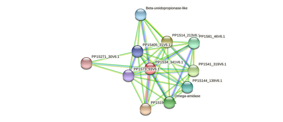 PP1S34_341V6.1 protein (Physcomitrella patens) - STRING interaction network